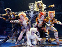 Cats, das Musical